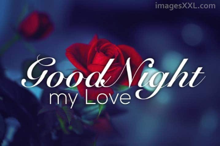 Good Night Love roses