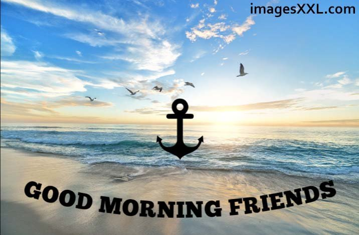 Good morning friends sea