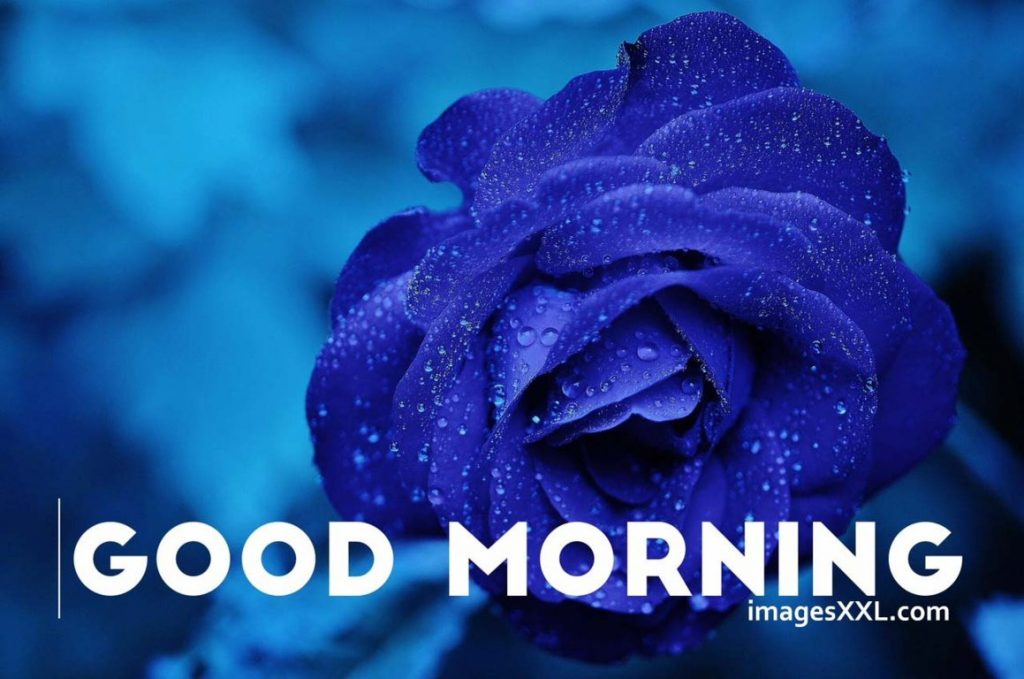 Good morning images 2