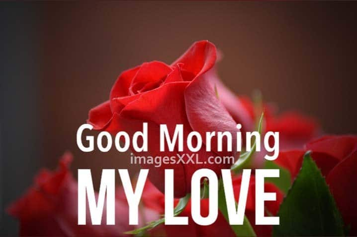 good morning romantic pictures