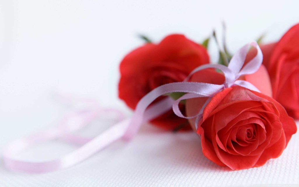 Romantic red roses picture